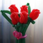 """Букет 20 """"Розы голландские красные"""""""