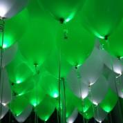 Белые + Зеленые светящиеся шары